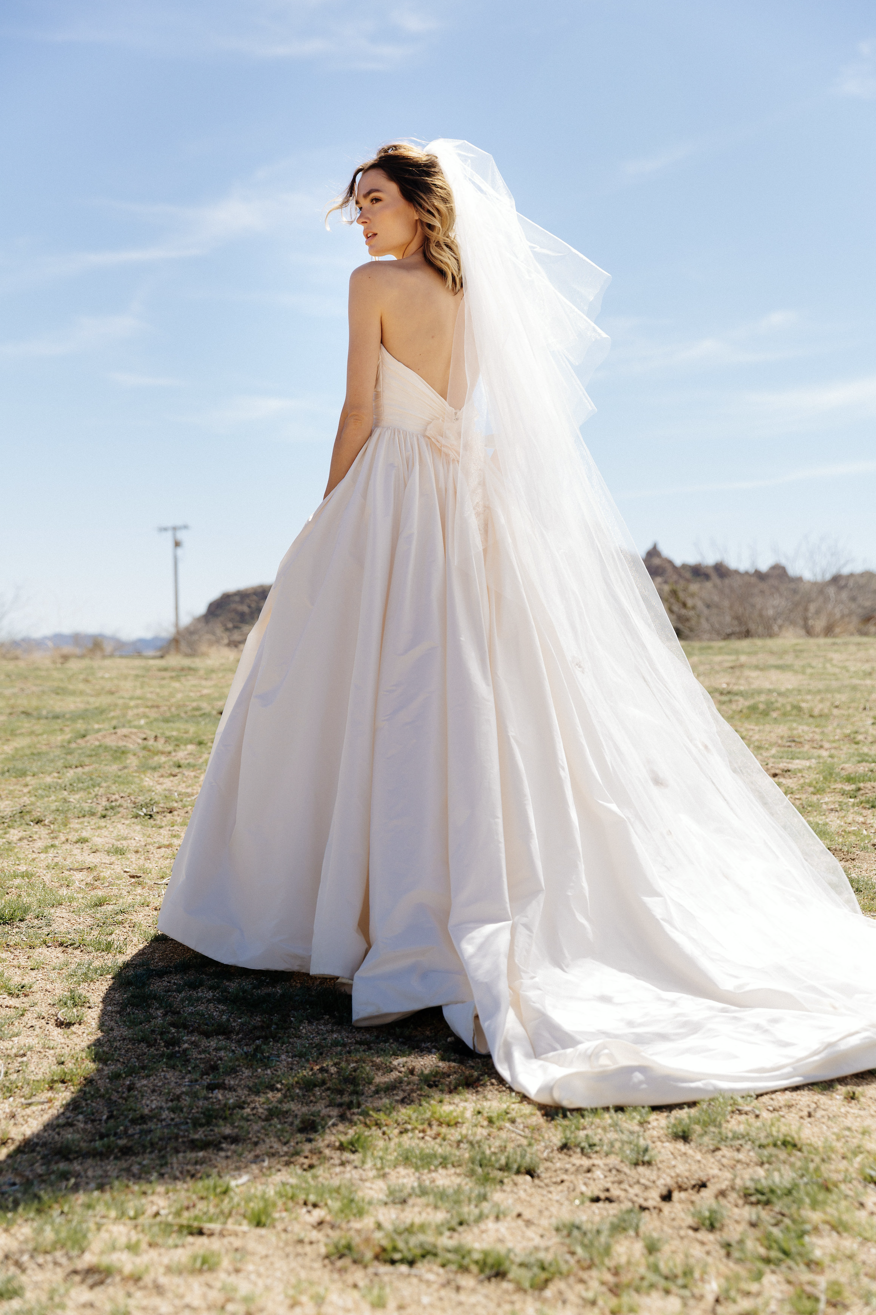 LeaAnn Belter Bridal Diana Gown and Diana Veil Wedding