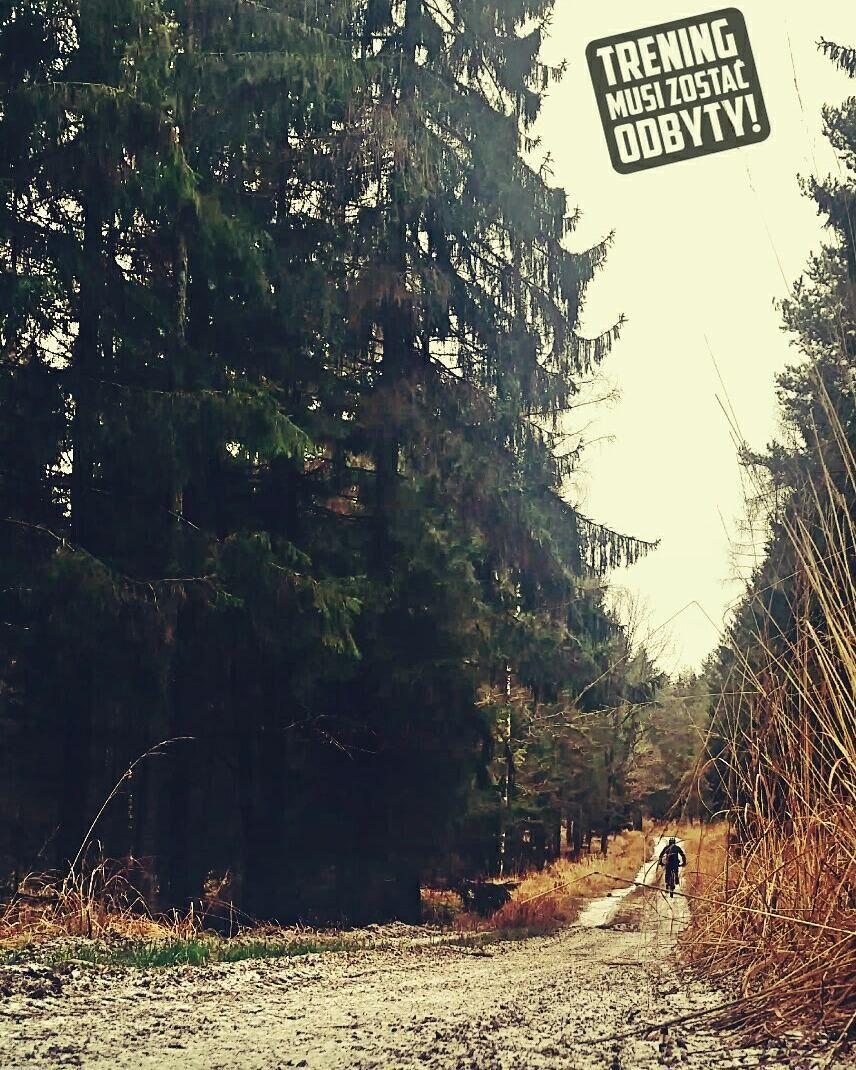 Zimno Ciemno I Wieje Czyli Treningmusizostacodbyty Trening Zima Las Rower Bike Motywacja Fit Determinacja Mtb Wytrzyma Country Roads Country Road