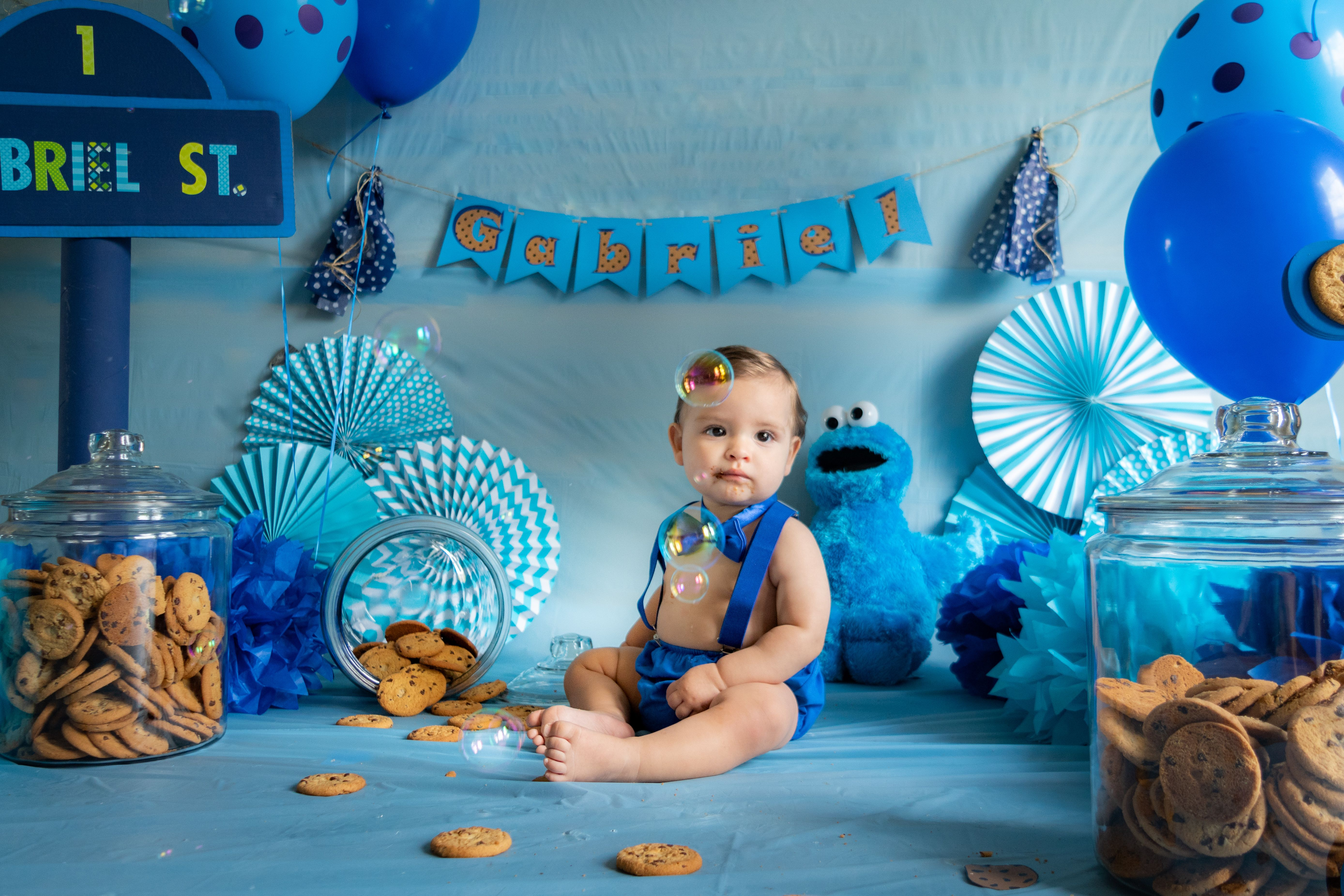 Pin On Cookie Monster 1 Year Old Photo Shoot
