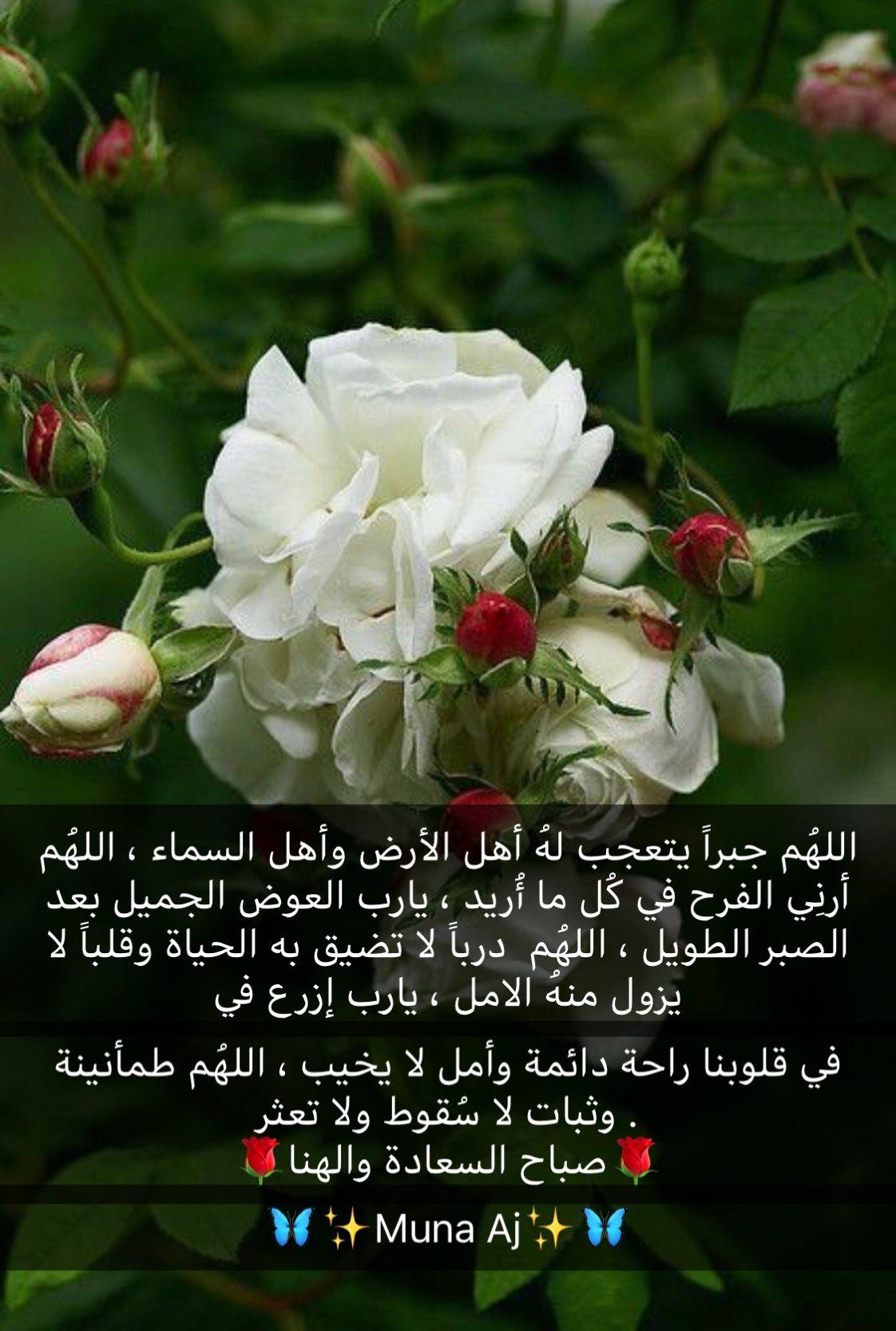 Pin By Queen Roses On صباح ومساء الخير اقتباسات جميله Good Morning Arabic Flower Wallpaper Morning Quotes