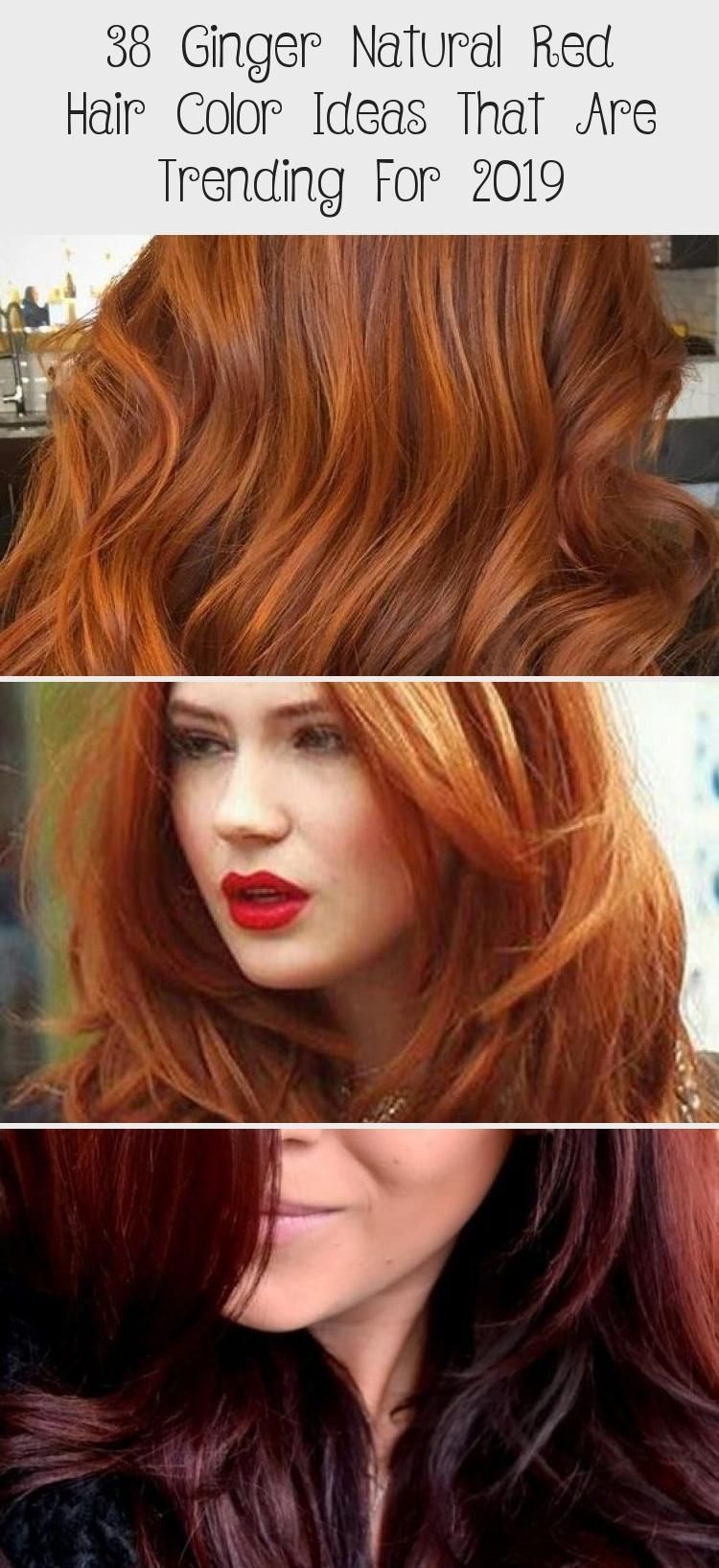 38 Ginger Natural Red Hair Color Ideas That Are Trending For 2019 Ginger Natura Color In 2020 Red Hair Color Natural Red Hair Hair Color