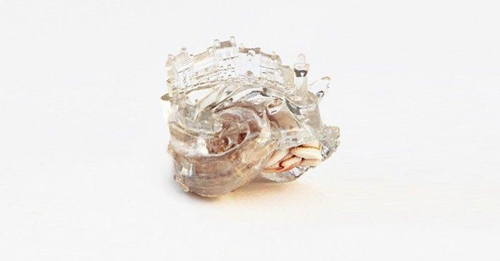 Aki Inomata 3D Printed Hermit Crab Shell