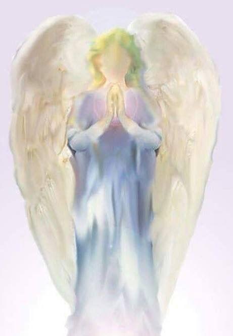 Amselhof Kunstdrucke pin by angela sanders on engelen