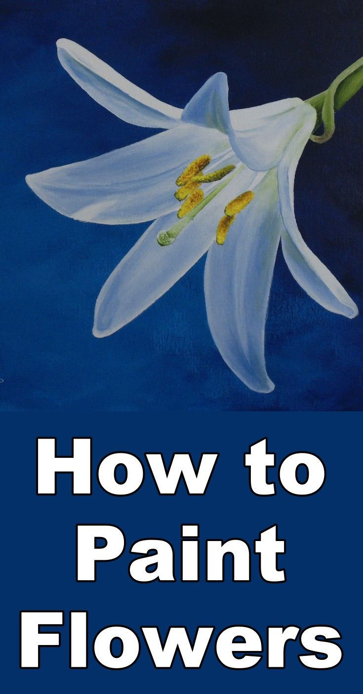 How to Paint a Daylily in Acrylic | Pinterest | Paint flowers ...