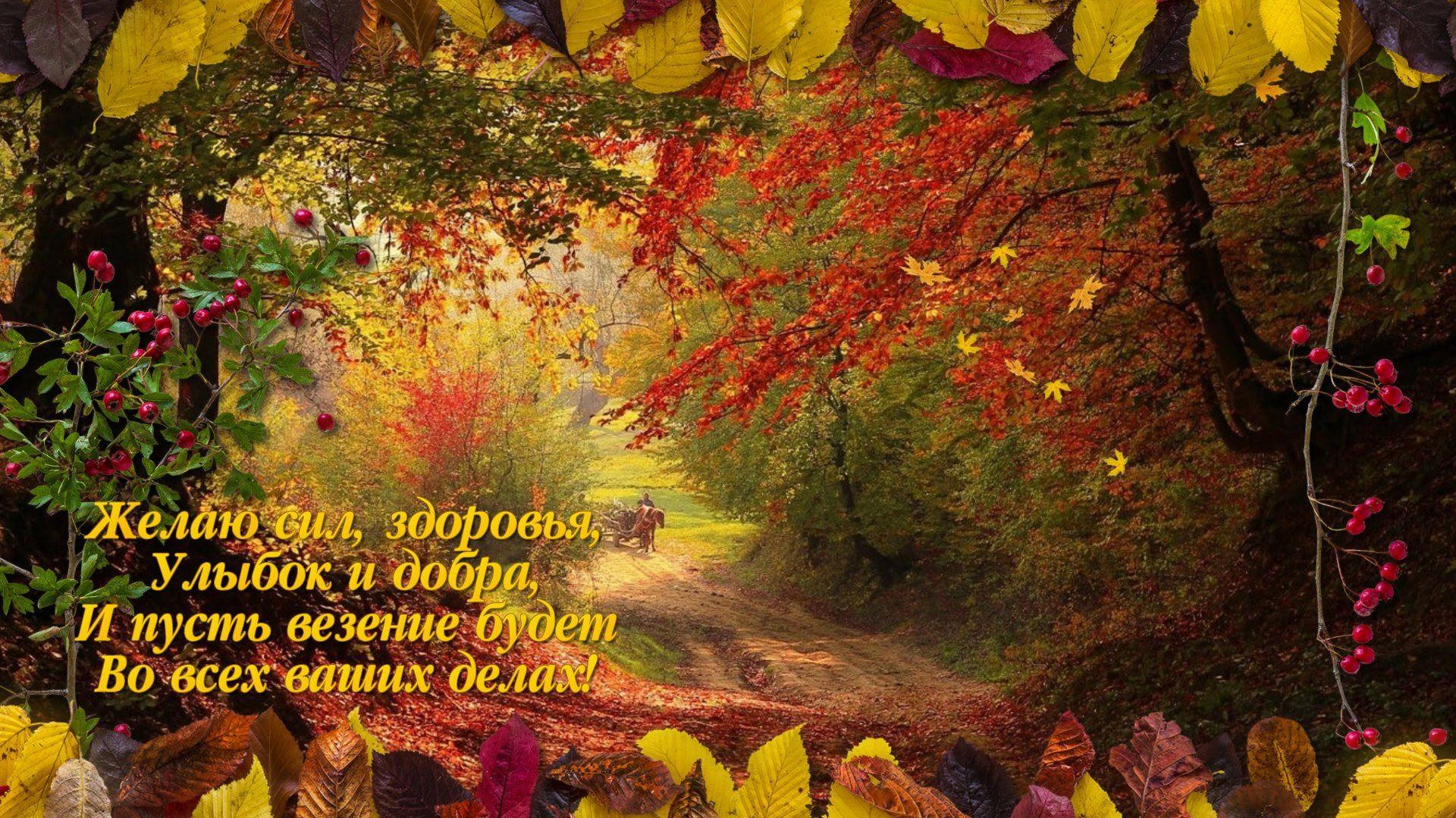 Пожелания в октябре открытки
