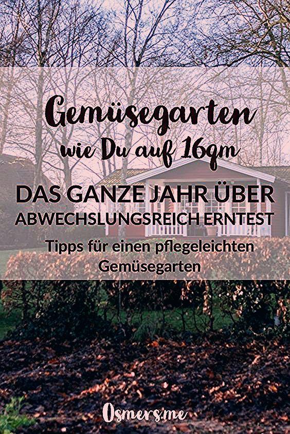 Anbauplan und Gartenkalender für das Gemüsebeet auf 16qm - Osmers Garten