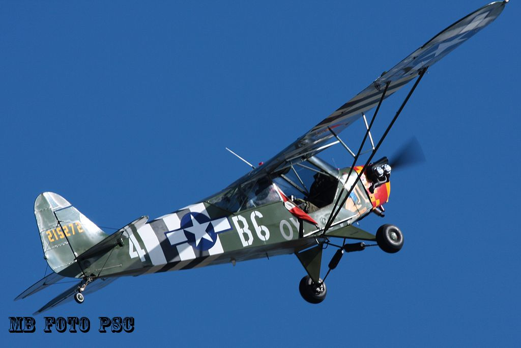 100th Anniversary Danish Air Force (2014)