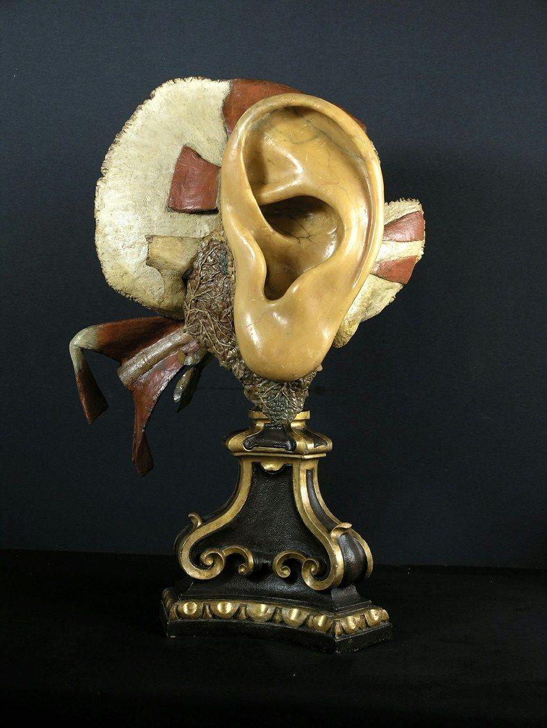 """""""Preparato in cera raffigurante un orecchio"""", Anna Morandi, 1755-74"""