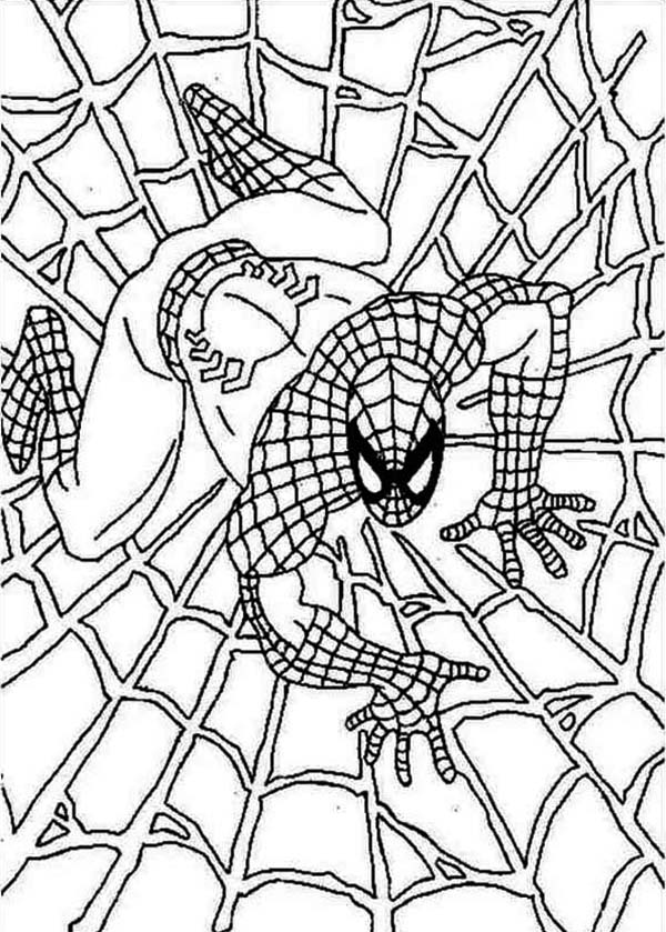 Spiderman On Spider Webs Coloring Page Coloring Sun Spiderman Coloring Superhero Coloring Pages Coloring Pages For Boys