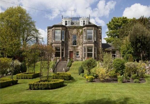 Property for sale in 21 West Mayfield, Edinburgh, Midlothian EH9 - 26395446
