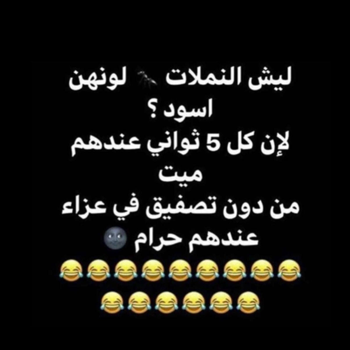 Pin By Dana On Funny Funny Words Funny Arabic Quotes Jokes Quotes
