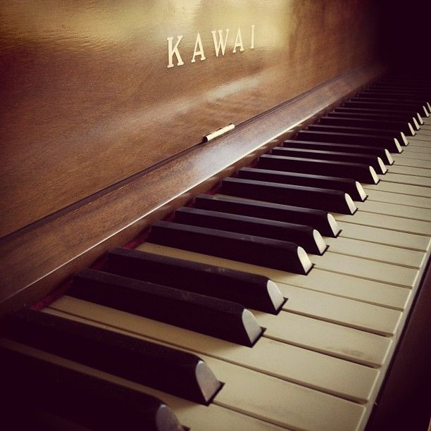 """""""The notes I handle no better than many pianists. But the pauses between the notes - ah, that is where the art resides."""" ― Artur Schnabel"""