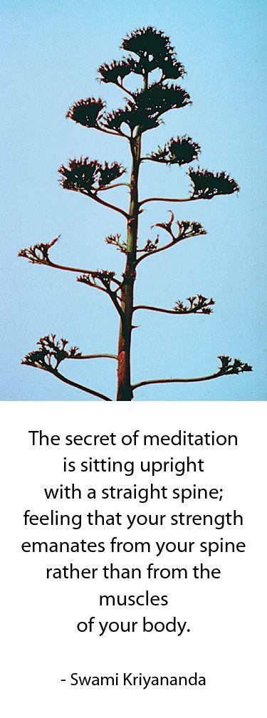Secrets of Meditation. Photography by Swami #Kriyananda.