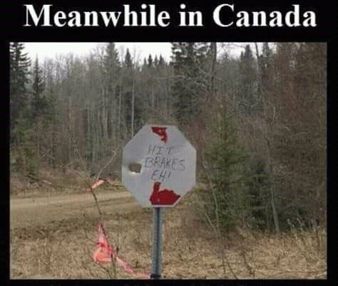 40 Canadian Memes That'll Have You Poutine On Your Shoes To Go Right To Tim Horton's - Memebase - Funny Memes