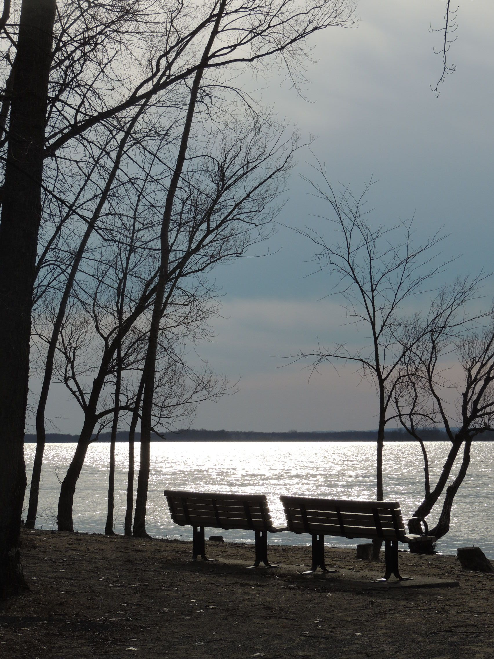 Pin By Annie Yue On Lonely Bench Winter And Fall Bench Ottawa