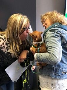 Simba An Assisi Dog Adopted On Wgn Radio Meets Wendy Snyder They Know You You Love Dogs Obvious Isn T It Dogs Cats Adorable
