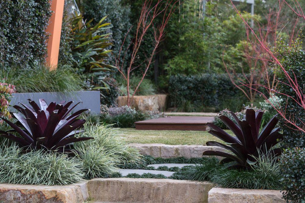 cheltenham — design-it | sydney | landscapes | pool ...