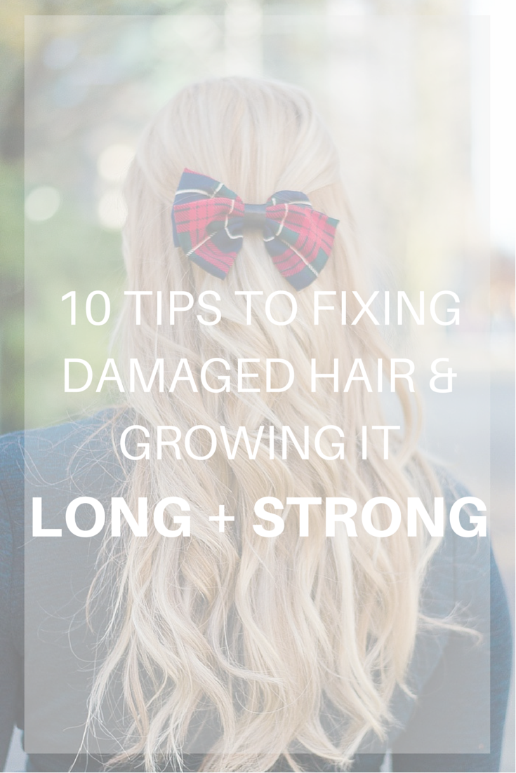 How to repair dry damaged hair the influenceher collective