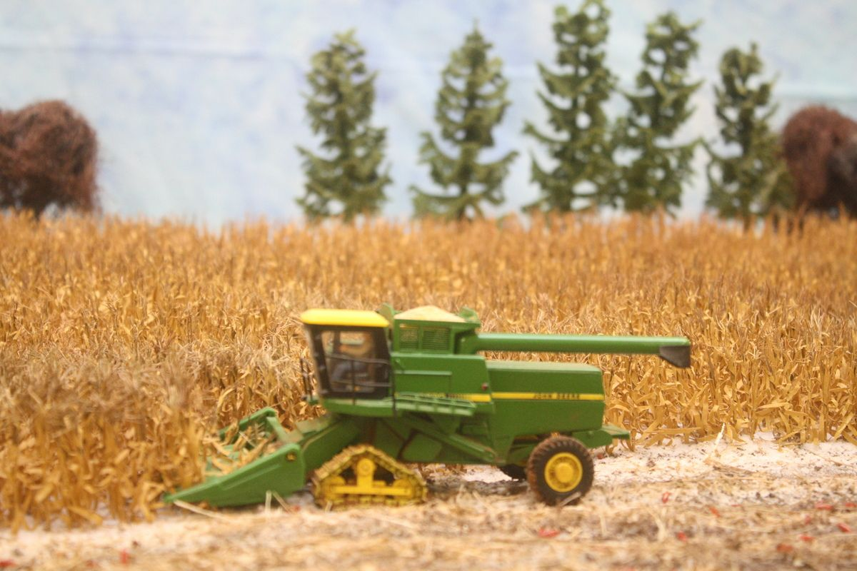 The Neal Farm Display Back From The Big Show Xii The Toy