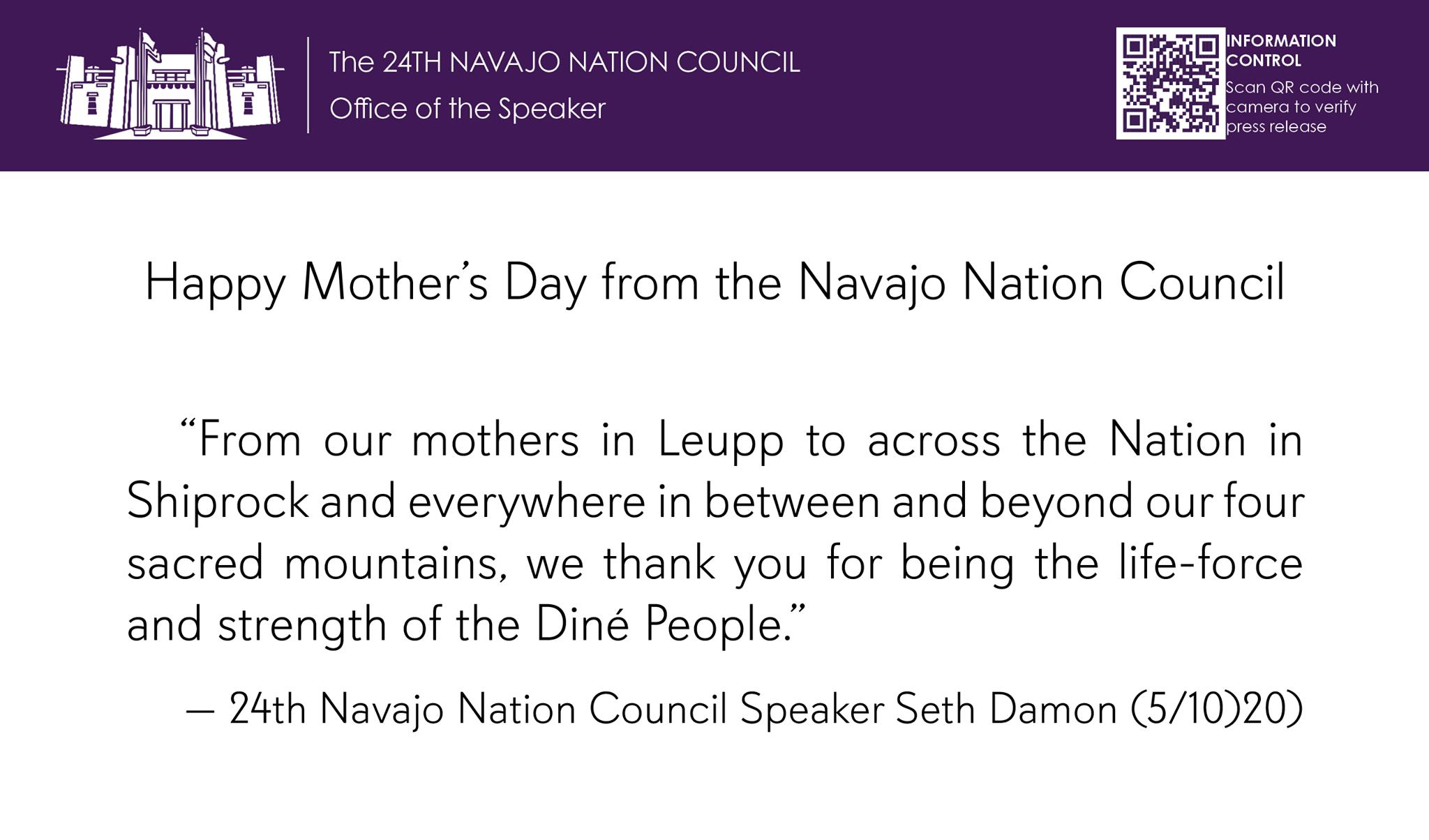 Navajo Nation Council (Arizona, New Mexico, Utah) in 2020