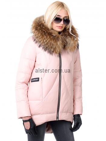 Зимняя куртка Vo.Tarun 637 (637)   куртки короткие в 2019 г.   Coat a12b7a83d61