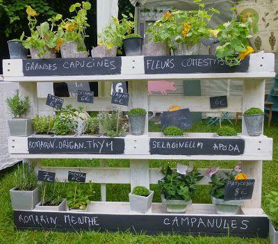 palette transform e en pr sentoir pour plantes patio pinterest pr sentoir palette et plantes. Black Bedroom Furniture Sets. Home Design Ideas