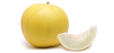 Golden honeydew melon is a hybrid melon within the honeydew family and is classified as a winter melon. Winter melons are called such because they ripen slowly and are not ready to eat until late fall. These melons are generally larger melons and have better shelf-lives than summer melon varieties. What they often lack compared to summer melons is fragrance. #wintermelon Golden honeydew melon is a hybrid melon within the honeydew family and is classified as a winter melon. Winter melons are call #wintermelon