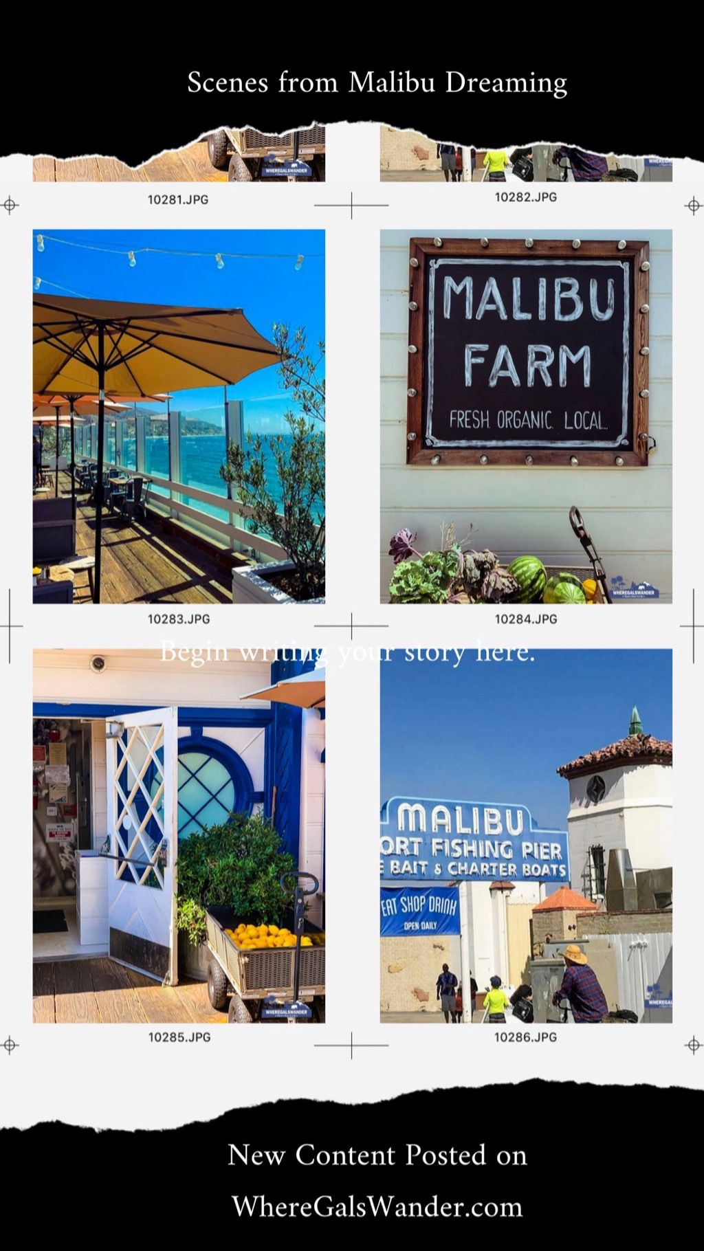 A sneak peek at our online content on malibu farms cafe