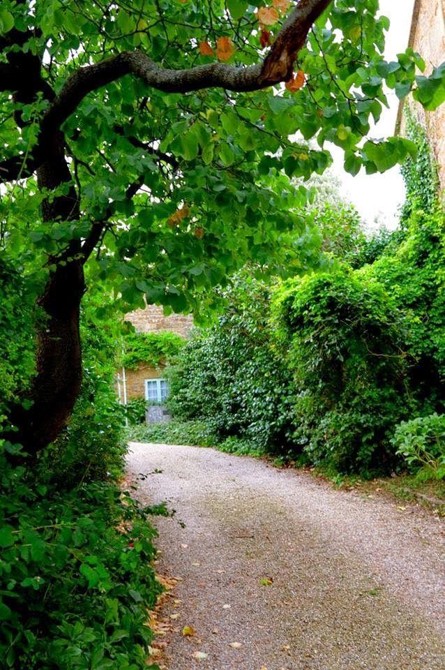 Hinton St George