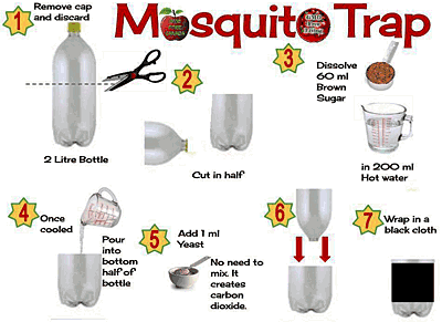Take It Or Share Easy Way To Trap And Kill Mosquitoes