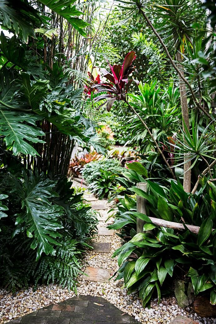 15 lush tropical garden