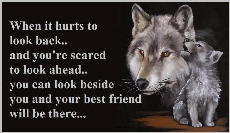 Best Friend How To Show Love Friendship Humor Best Friends