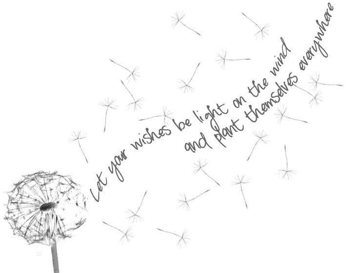 Wish Quotes Dandelion Wish Quotesquotesgram  Quotes  Pinterest  Dandelions