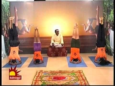 dr asana andiappan's kalaignar tv yoga program 04 05 2012