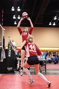 que es el voleibol wikipedia