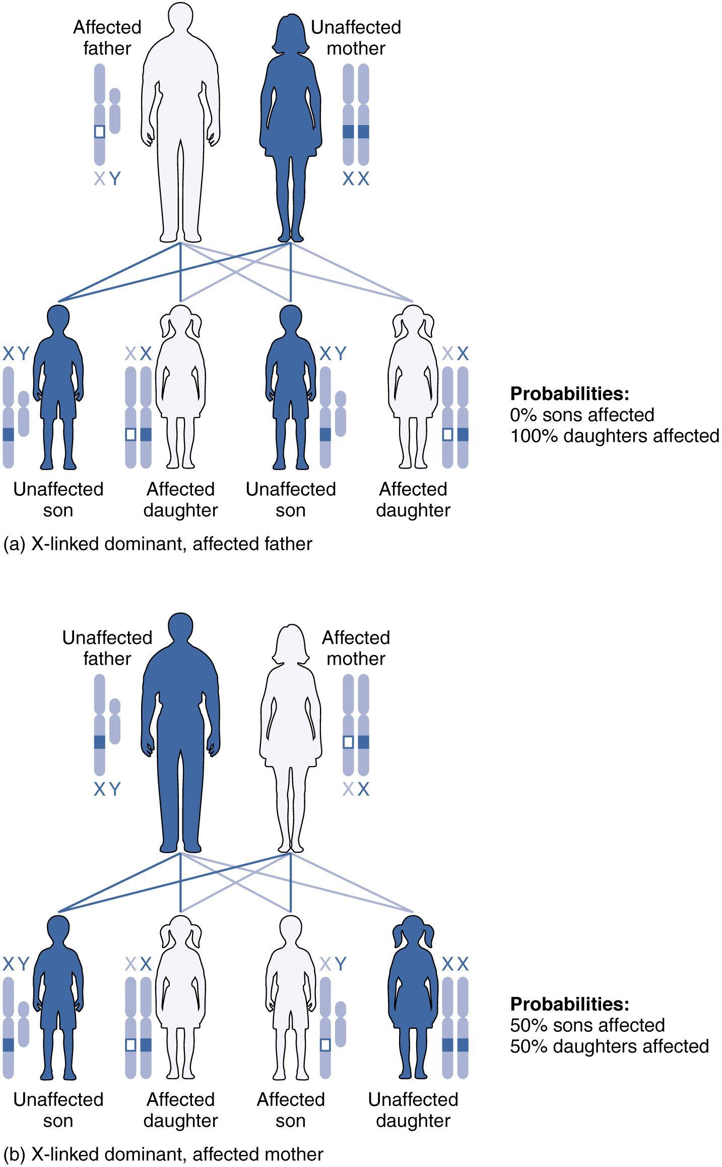 Inherited Colour Vision Deficiency Color Blind Color Vision