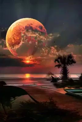 Best Moon Photography.