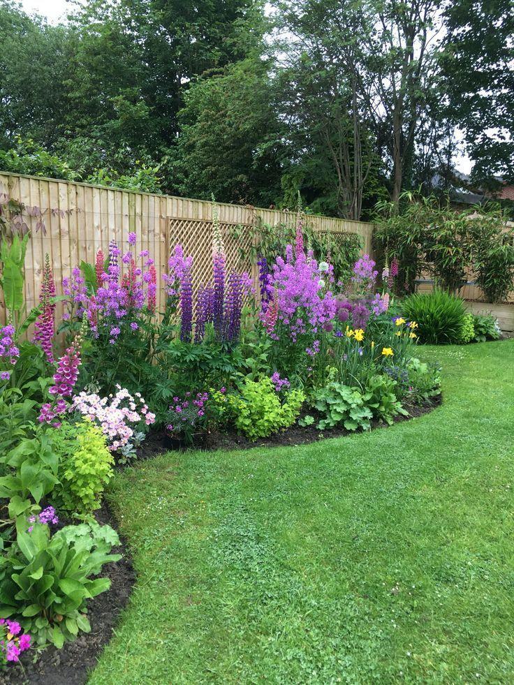 Sweet Rocket Flowers mit Lupinen, Allien, Iris, goldene Mutterkraut, Fingerhüte… #budgetbackyard