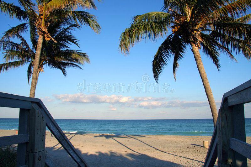 Empty Beach In Miami An Empty Beach In Miami Florida Spon