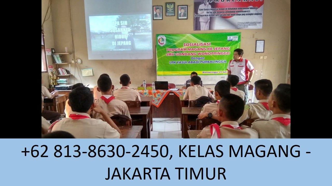 Wa 62 813 8630 2450 Informasi Magang Sekitar Jakarta Timur Marketing Startup Pemasaran