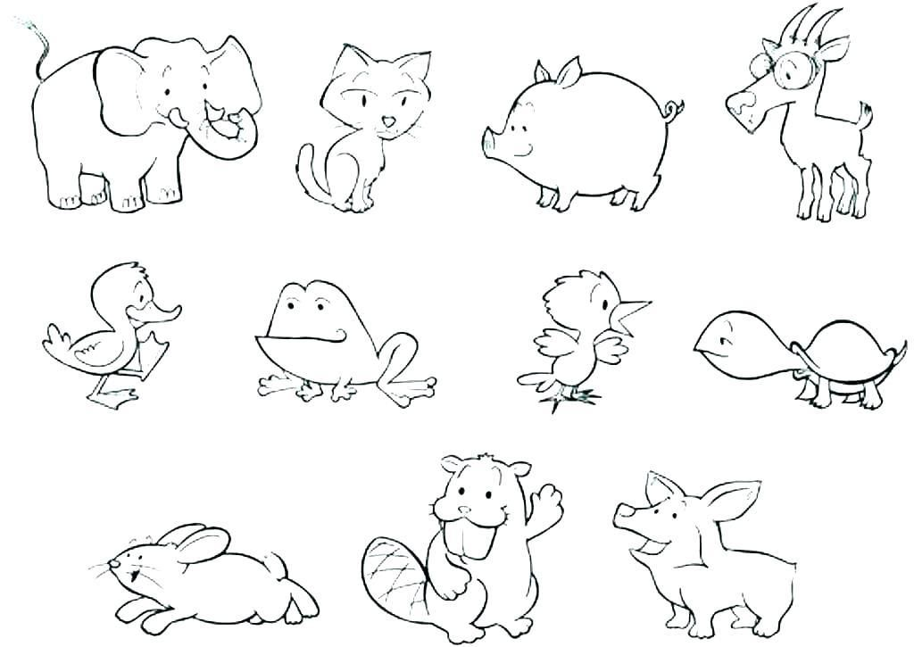 Coloring Pages Of Zoo Animals Animal Tracks Coloring Pages ...