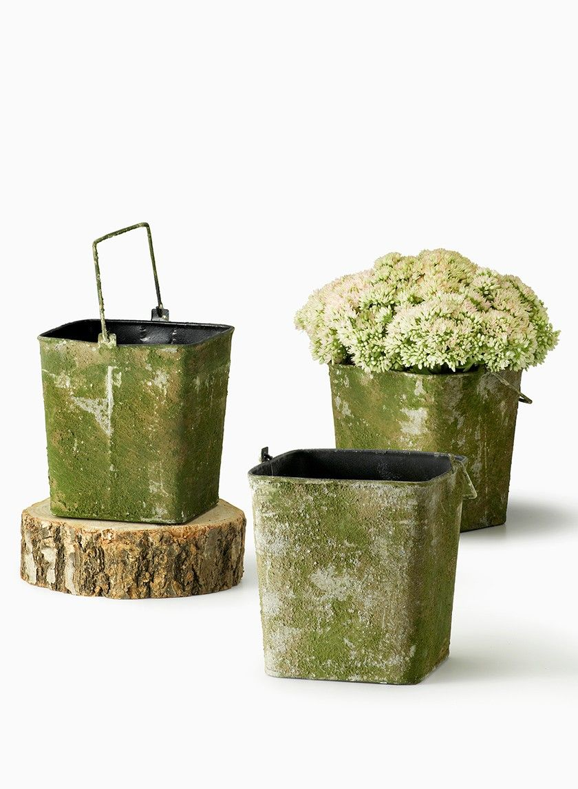 Mossed tin square bucket rustic vintage outdoor wedding centerpieces mossed tin square bucket rustic vintage outdoor wedding centerpieces romantic classic nyc wholesale floral supplies diy junglespirit Images