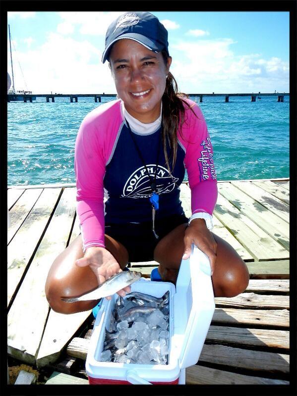 Jennifer Quintero Swimming Riviera Maya Dolphins