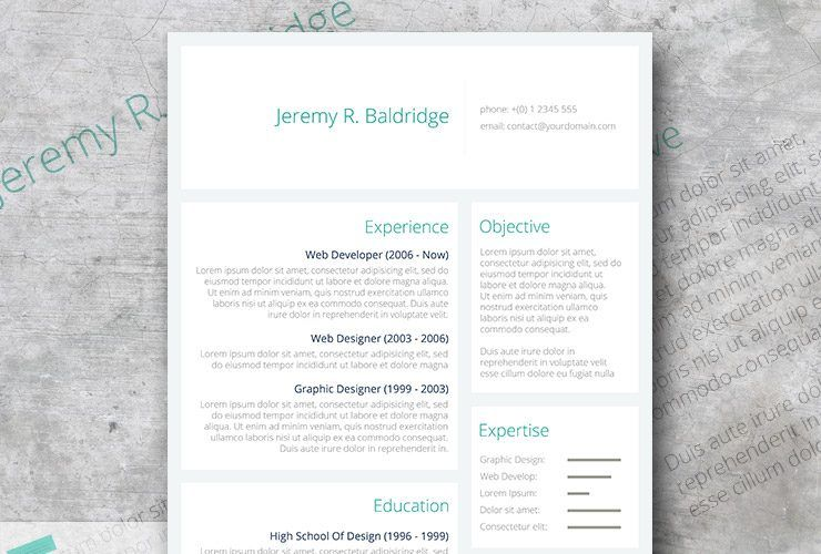 Clean Sections Resume Freebie Resume template