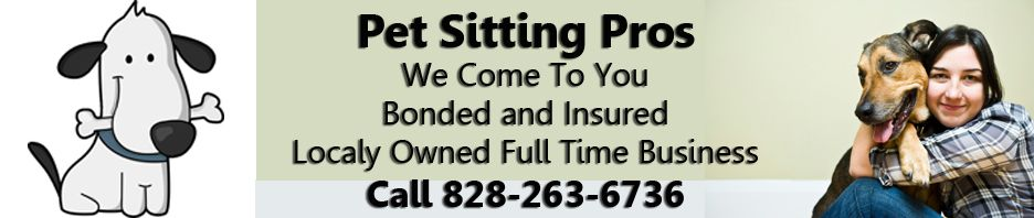 Great locally owned full time pet sitting business in