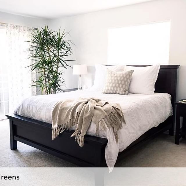 Thank you for the repost @rollinggreens! All monochrome everything, with a touch of green . @kellymartininteriors for @Homepolish | : @bherrero13