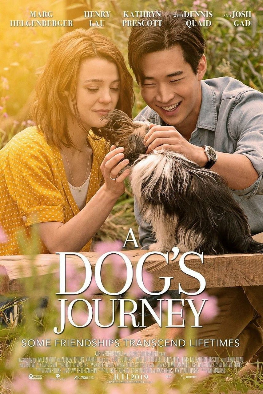 Hd 1080 A Dog S Journey 8900 9834 8651 Film Complet Dublat In Romana A Dog S Journey Movies Movie Posters