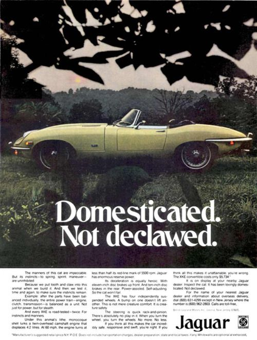 This Early 70 S Jaguar Ad Gives You Some Insight Into The Evolution