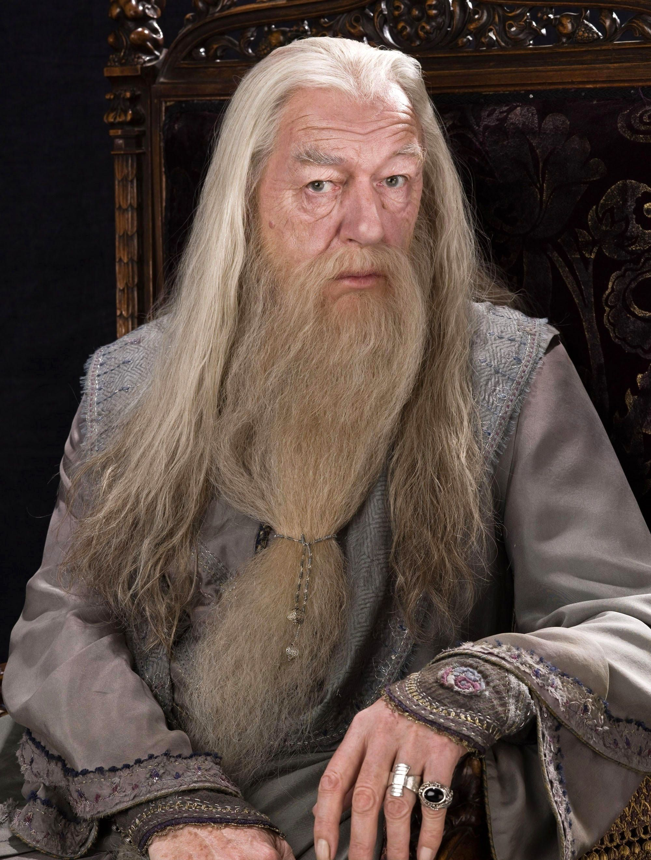Albus Dumbledore Rings Beard Chair White Hair