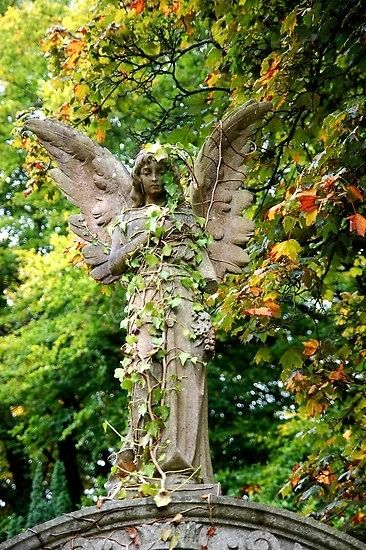 Angelic ☫ Winged Cemetery Angels And Zen Statuary   Angel Statue In Garden